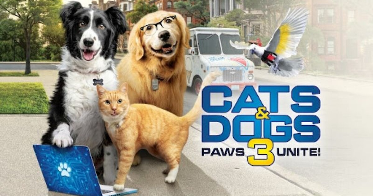 This Week S Movie Review Cats Dogs 3 Paws Unite Recent News Drydenwire Com